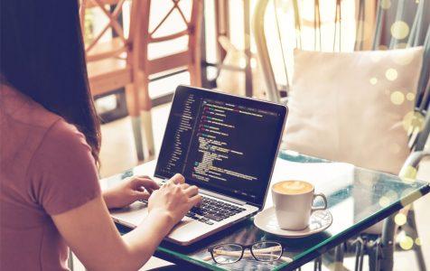 Female Programmer