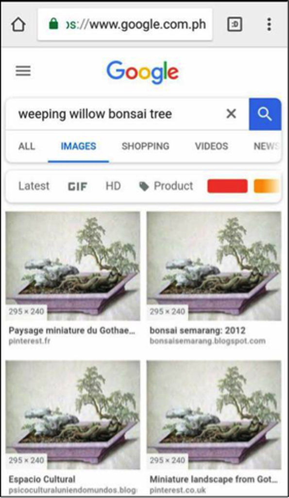 Image search result with different resolutions