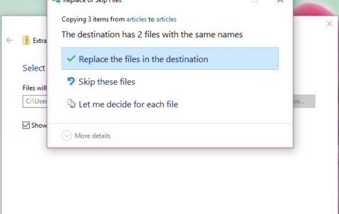 Replace or Skip Files on Windows