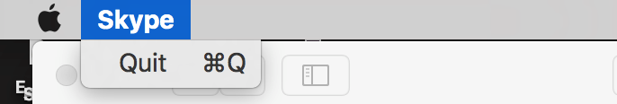 Skype GUI Not Loading