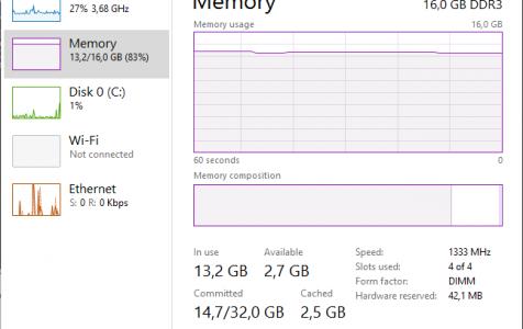 Windows 10 memory leak check