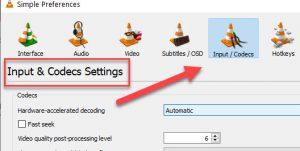 VLC Input or Codecs