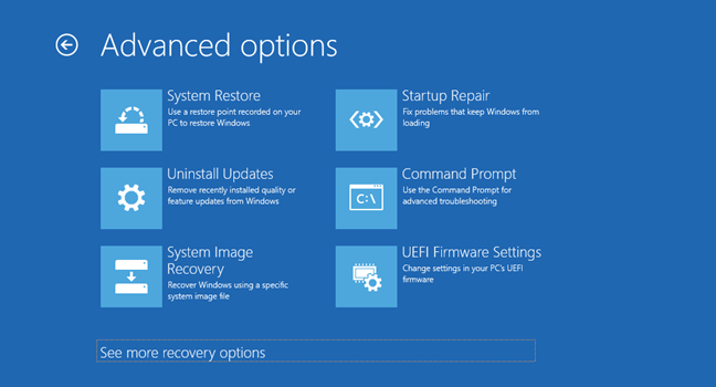 Windows Advanced Options