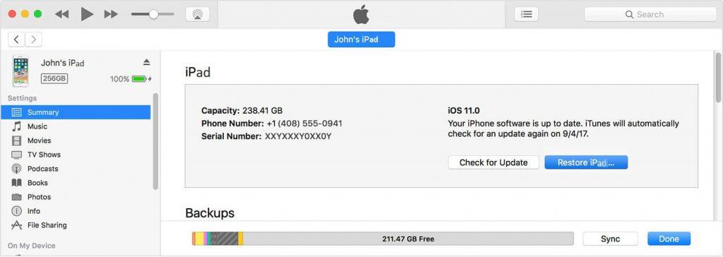iPad Restore Backup