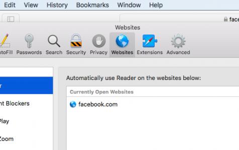 Safari Reader