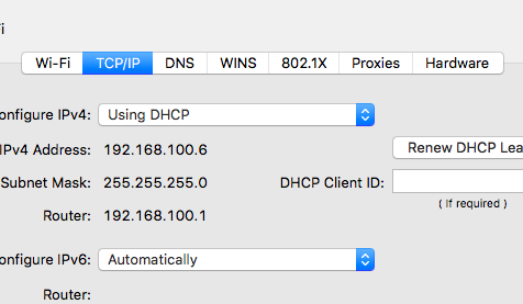 TCP-IP settings on Mac